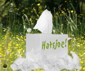 Hatjsoe_maart2016