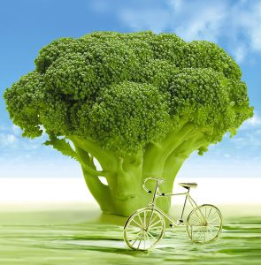 BroccoliFiets-694304
